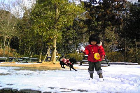 1.15雪遊び.jpg
