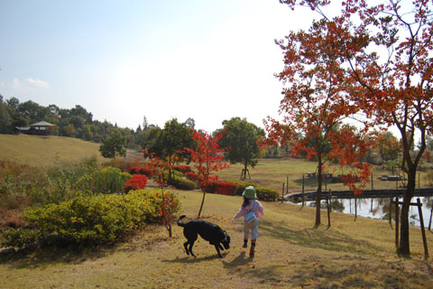 10.28紅葉散歩.jpg