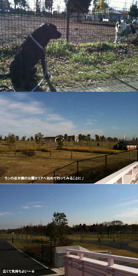 12.15公園探検.jpg