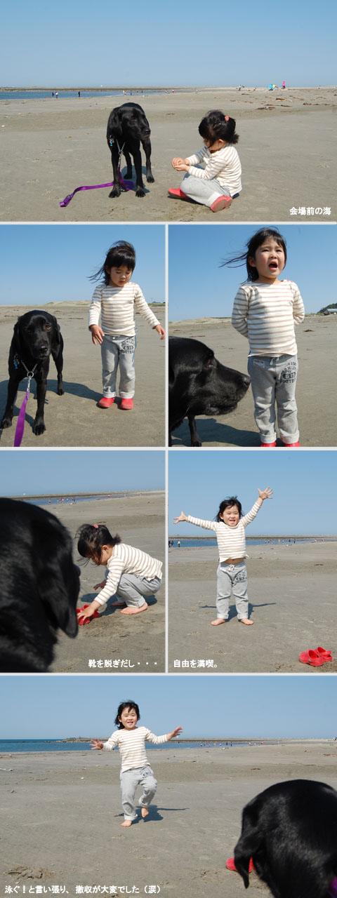 5.2御前崎の海.jpg