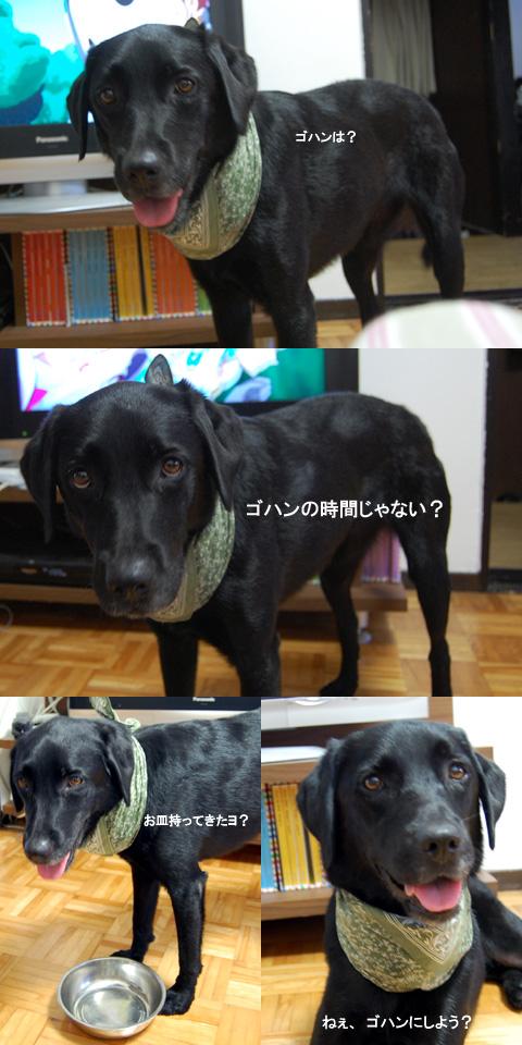 9.12猛烈アピール.jpg