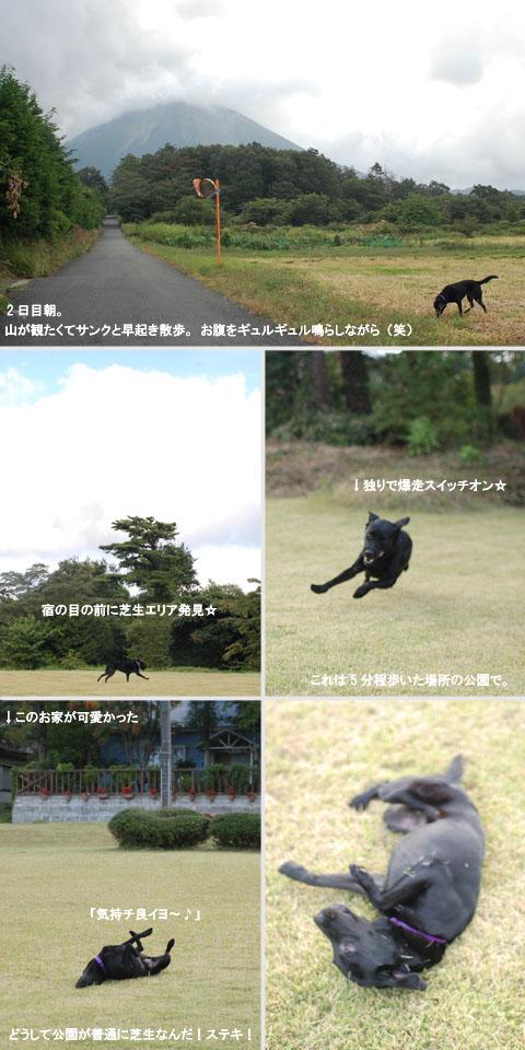 9.20早朝散歩.jpg