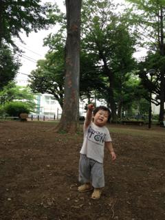 image-20130801223102.png