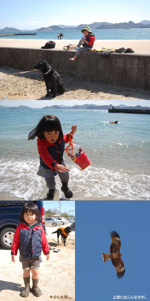 3.21海の色々.jpg